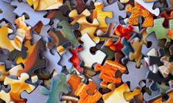 Artificial Intelligence Training Algorithms